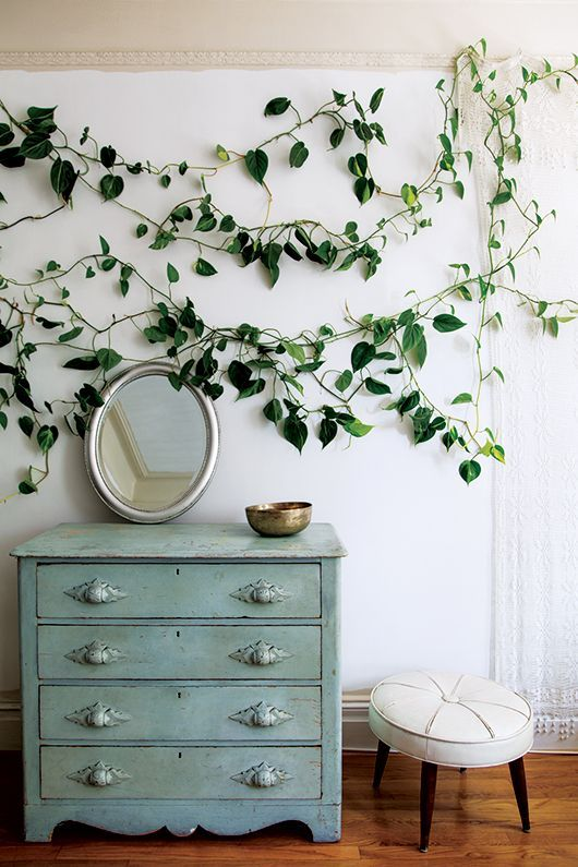 climbing plants in the bedroom over the dresser make your space fresh and spring-like