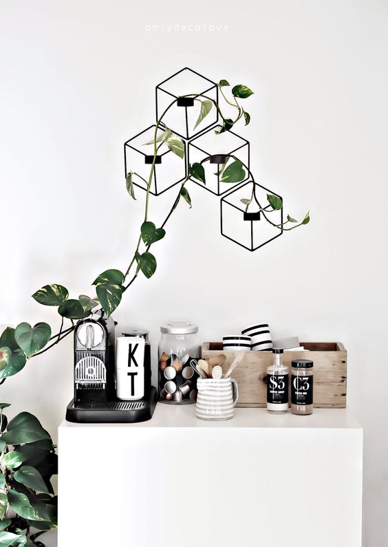 a coffee nook decorated with a geometric trellis and a climbing plant for an organic feel