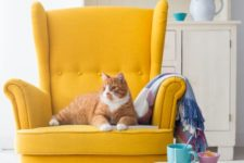 14 a bold yellow wingback brings a cheerful feel and colorful touch to the space