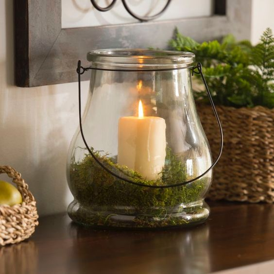 Edgy and trendy moss home decor ideas digsdigs