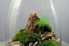 19 a landscape-style terrarium with moss balls, pebbles and rocks for a chic touch