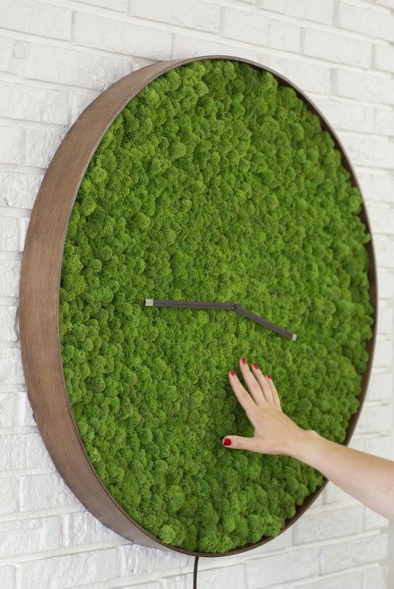 a large moss wall clock with a wooden frame is a stunning piece to add a fresh touch