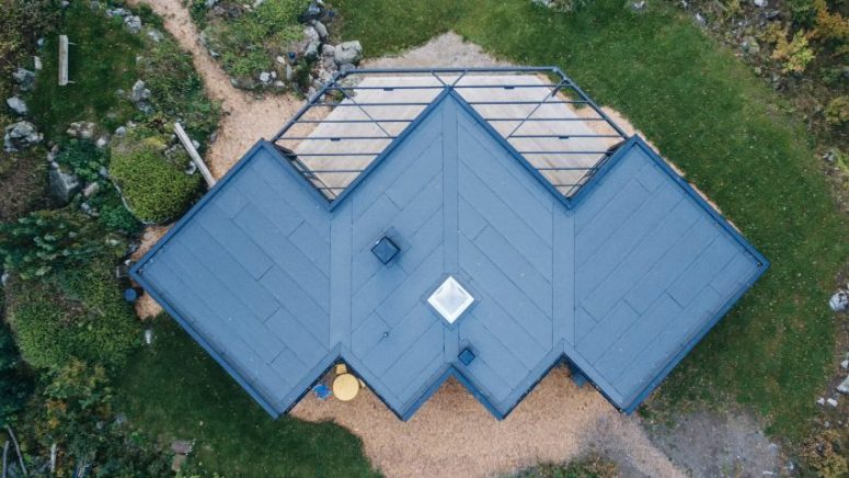 Bat-Shaped Summer House In The Swedish Countryside
