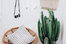11 a wood and leather rack, a woven chair, cacti and succulents in terracotta pots