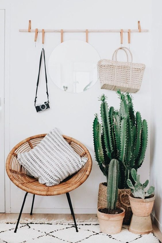 a wood and leather rack, a woven chair, cacti and succulents in terracotta pots