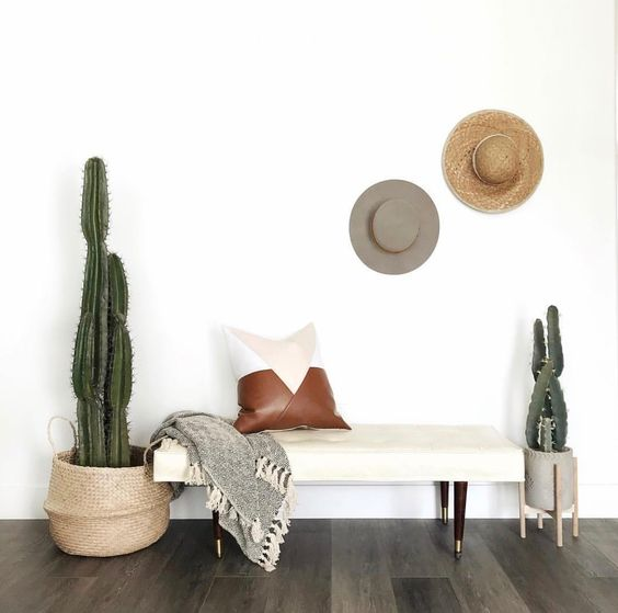 an upholstered bench, a couple of hats, cacti in pots and a leather pillow are all you need