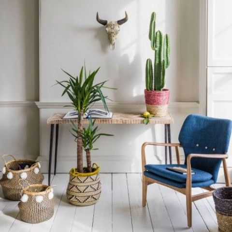 a boho console, a cactus in a wrapped pot and some greenery plus a faux skull over the table