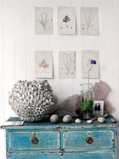 a distressed turquoise console, corals and pebbles, a potted flowers and some vintage posters