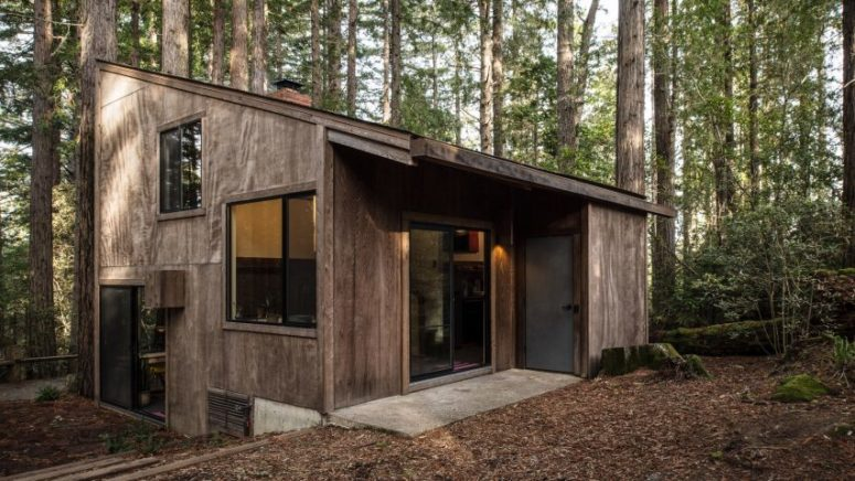 Mid-Century Sea Ranch Cabin In The Woods