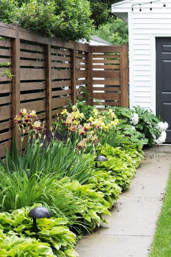 a simple plank fence and lush textural greenery planted next to it for a fresh outdoor look