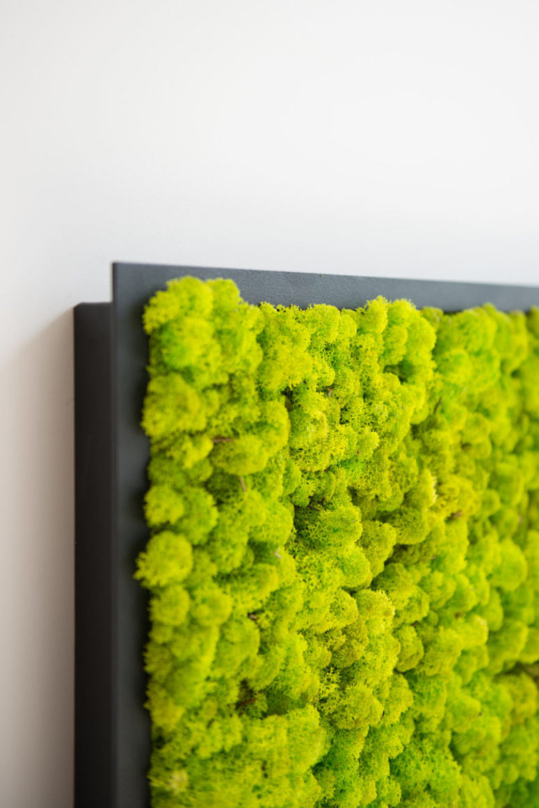 They can also double as a natural wall art, what can be better to refresh a space