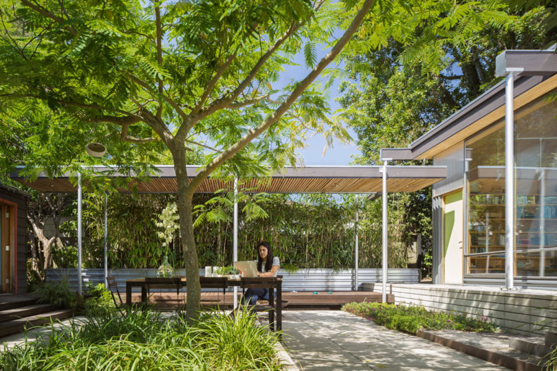 The outdoor space is very comfortable, with a tree and it's also suitable for working outdoors