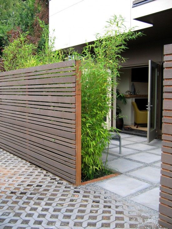 a dark stained wood plank fence and lush bamboo planted in front of it makes your space eco friendly and fresh
