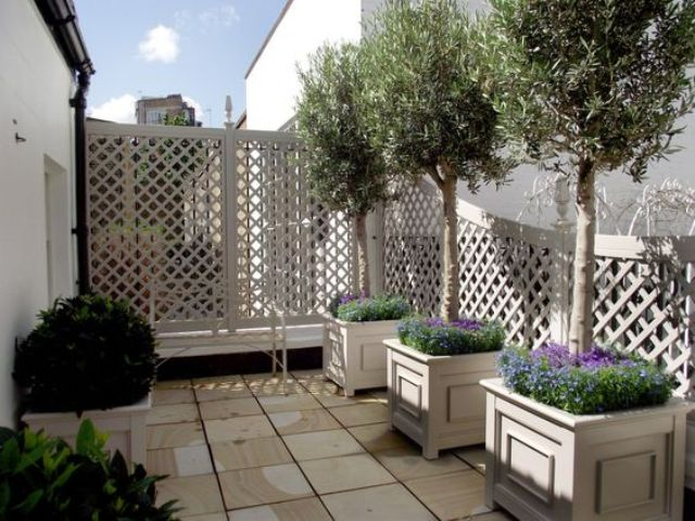 whitewashed trellises can be used as privacy screens and covered with plants or blooms comign up if you want