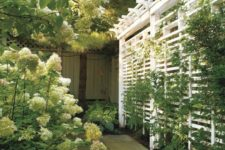 17 a simple trellis screen with lots of greenery is a fresh and natural solution for your outdoor space