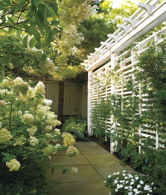 a simple trellis screen with lots of greenery is a fresh and natural solution for your outdoor space