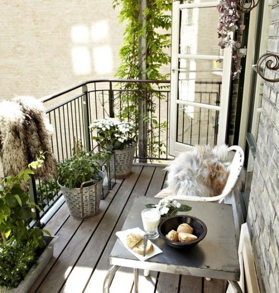 a metal table, a couple of chairs, potted greenery are all you need for a simple and comfy look