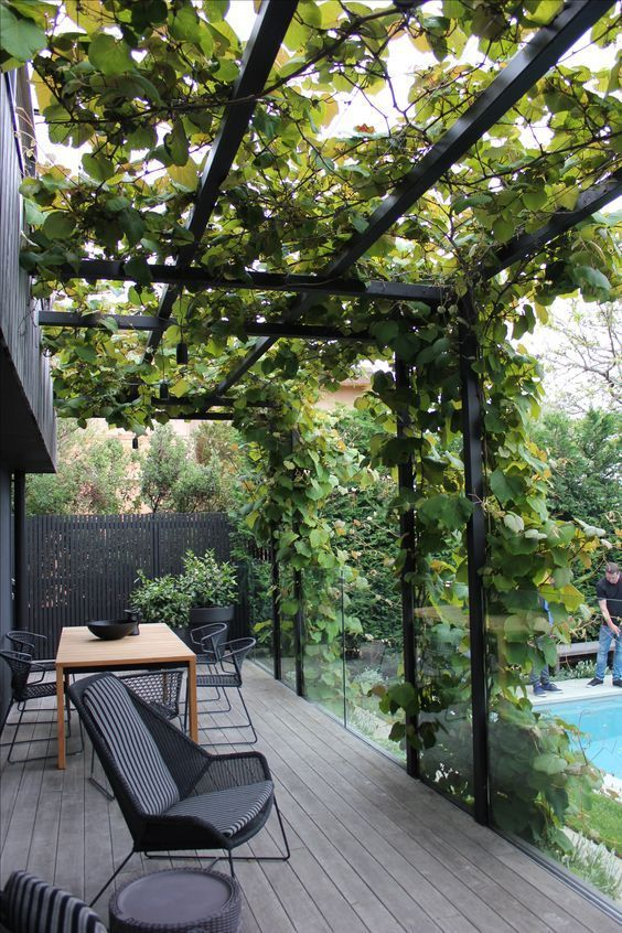 a large metal frame covered with lush greenery looks modern and refreshes the dark space