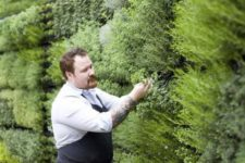 23 a vertical herb garden for privacy, a wonderful smell and is a must for home cooks