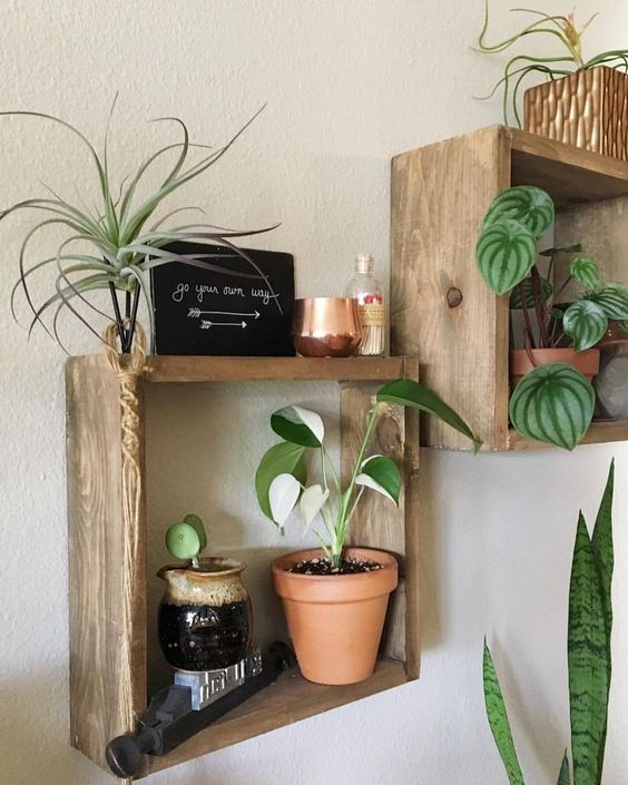 rough wood box shelves make a nice idea for storing a  lot of things andmay be used for plants, too