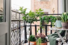 25 folding furniture and potted greenery are all you need for a small balcony