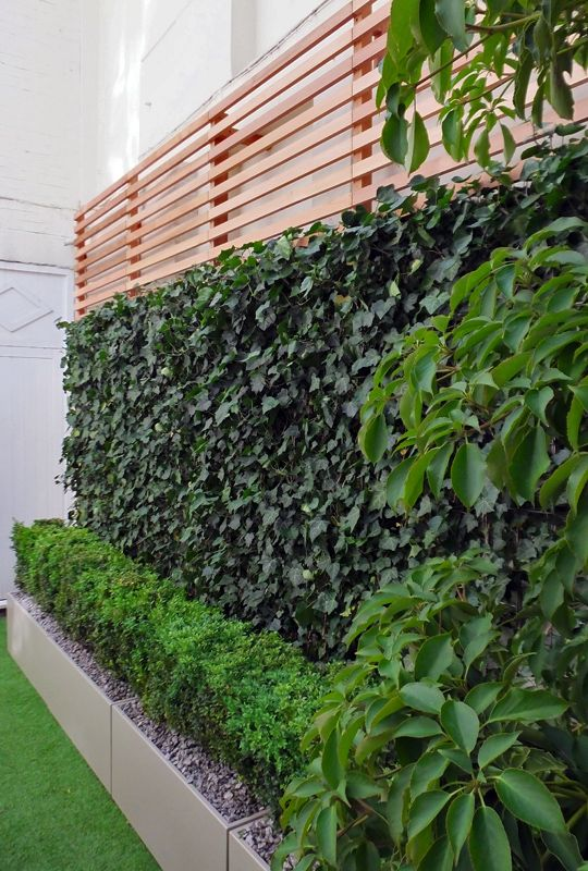 planters with greenery and a living wall finished with a plank part is an eye-catchy combo for your ooutdoor space