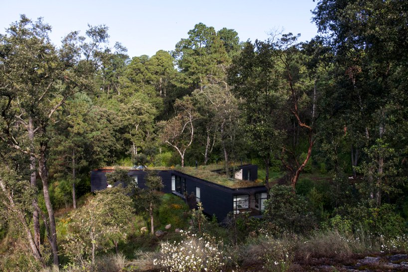 This home in the forest is a unique dwelling, which stands out but still looks harmonious in the surroundings