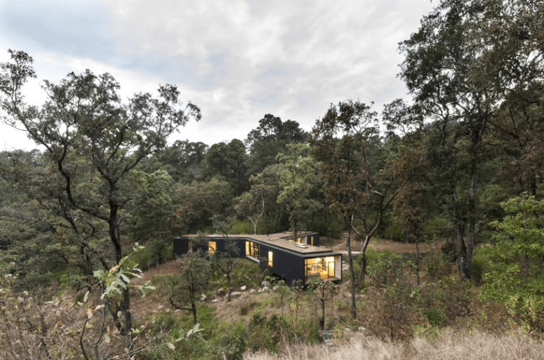 The house takes maximal advantage of the location with much glazing - the forest views are amazing