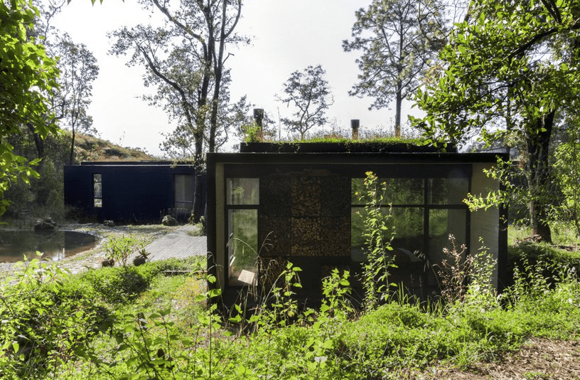 The landscaping includes some greenery, a green roof and a pond next to the house