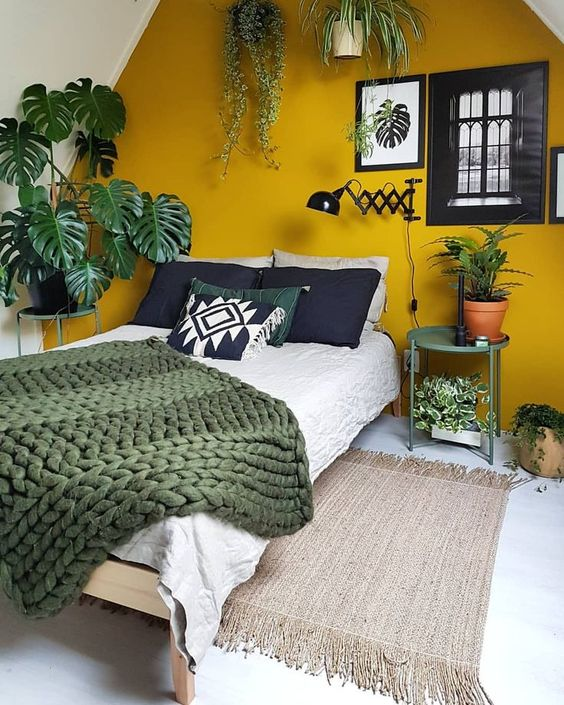 green taken in potted greenery and a blanket and a mustard accent wall for a contrast