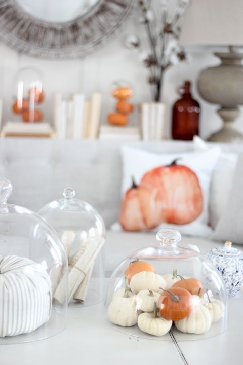 small faux pumpkins in a cloche is a simple and cool fall decoration for any space