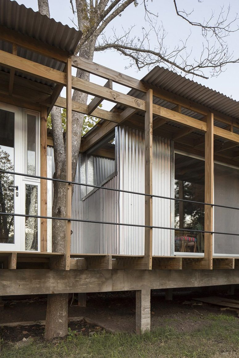 There are many windows and the trees are incorporated into the house contruction seamlessly