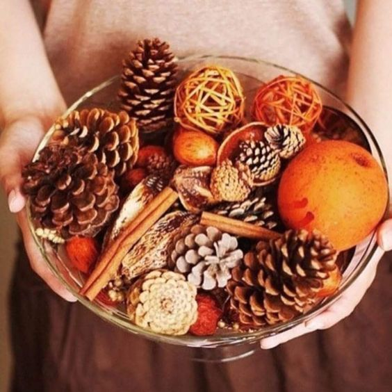 make your own fall display in a bowl putting cinnamon bark, pinecones, citrus and other stuff for fall