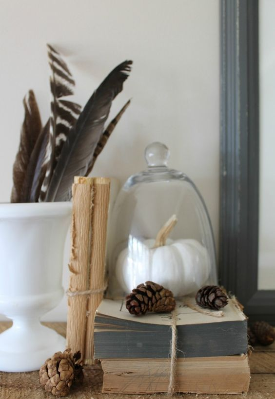 a vintage books stack, feathers and pinecones plus a fake pumpkin in a cloche