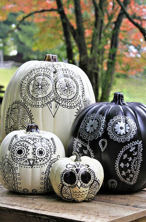 boho chic monochrome cuteness of black and white pumpkins with owls painted on them