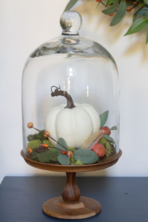 a cloche with a wooden base with moss, a faux pumpkin and berries and veggies plus foliage for a cozy feel