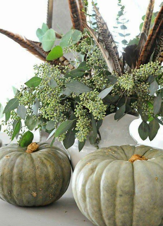 some heirloom pumpkins, seeded eucalyptus and feathers will make up a nice Thanksgiving display with a boho feel