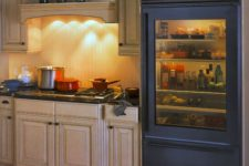 06 such fridges are available in various colors and with different types and colors of glass to match your space