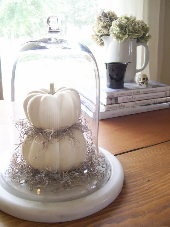 a cloche with white fake pumpkins and hay is ideal for neutral rustic or vintage Thanksgiving decor