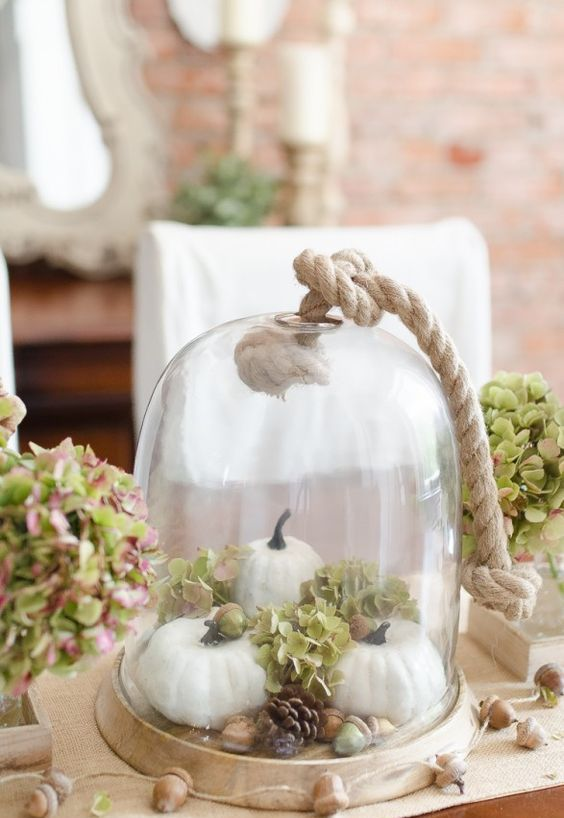 a neutral rustic cloche display with fake pumpkins, hydrangeas, acorns and pinecones and thick rope looks wow