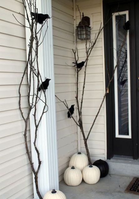 black and white pumpkins, branches and fake birds sitting on them look scary enough for an entrance