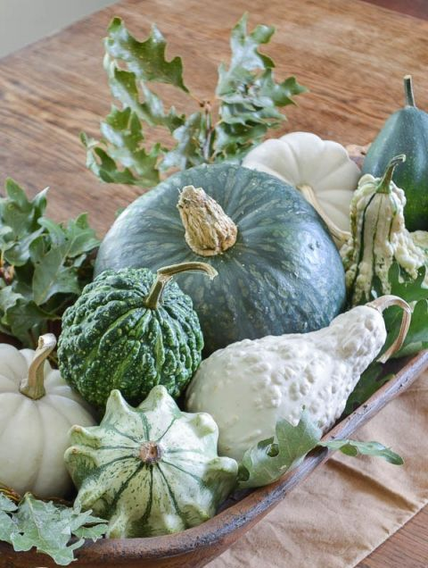 a vintage rustic centerpiece of a bread bowl filled with white and green gourds and fresh oak leaves