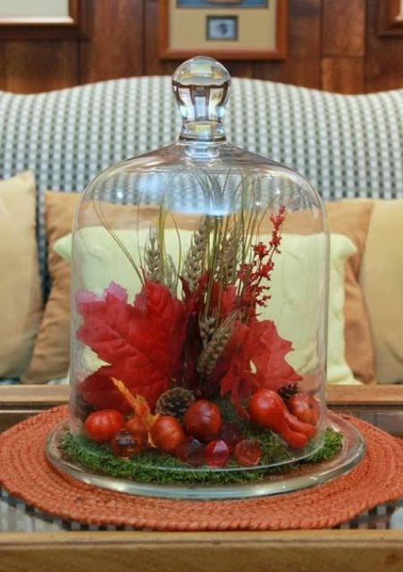 a bright red cloche display with fake leaves, berries, wheat, pinecones, herbs will add color to your space