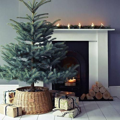 a Christmas tree in a basket with no decor at all is a super modern and very actual idea