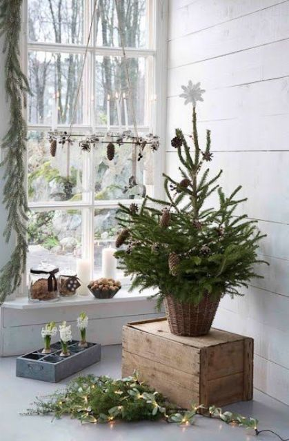 a small Christmas tree with pinecones and a white star on top is a cozy and super natural idea