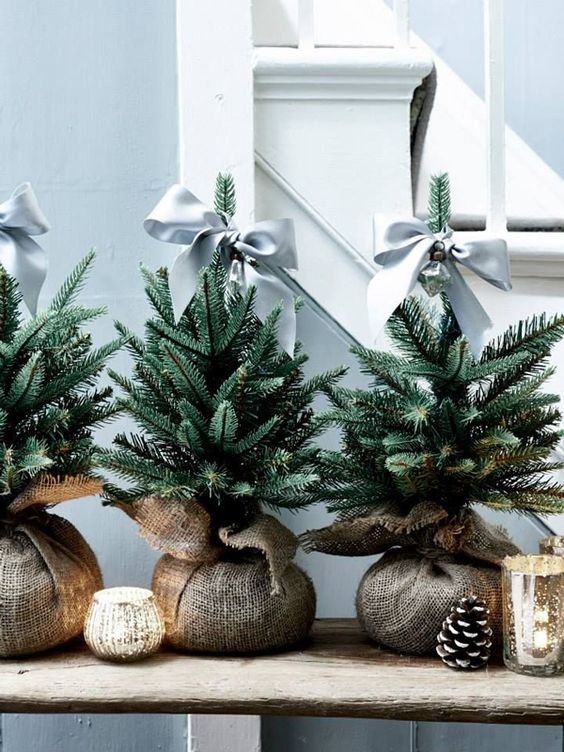 a trio of little Christmas trees wrapped in burlap and topped with grey ribbon bows for a cute look