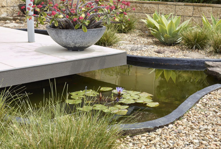 You may also see a pond with floating plants and blooms plus some desert-styled landscape