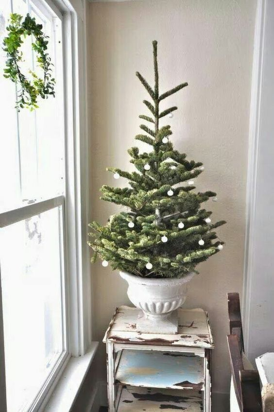 a small tree in a vintage urn decorated with tiny white ornaments - you won't need more for a catchy look