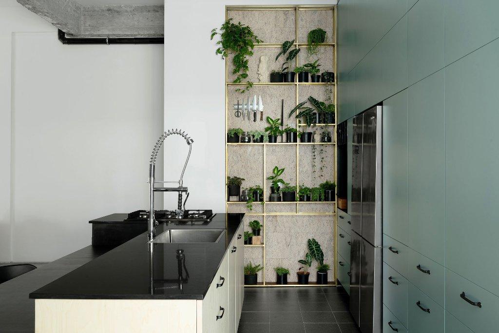kitchen with a cute fresh herb garden