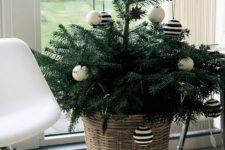 cute small christmas tree